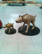 Hyena Collection!